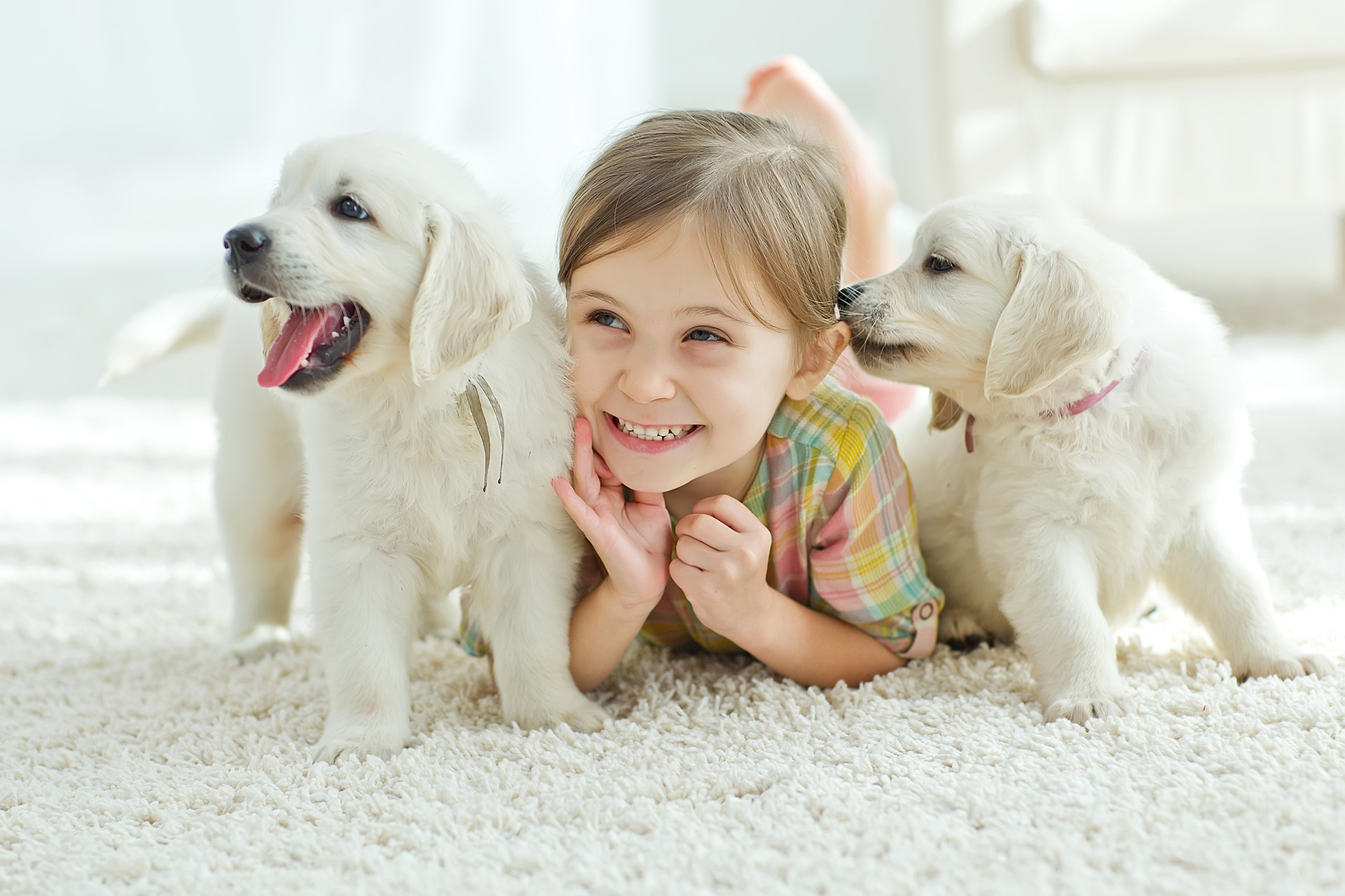 girl_puppies